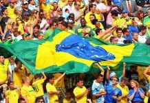 braziliq fenove